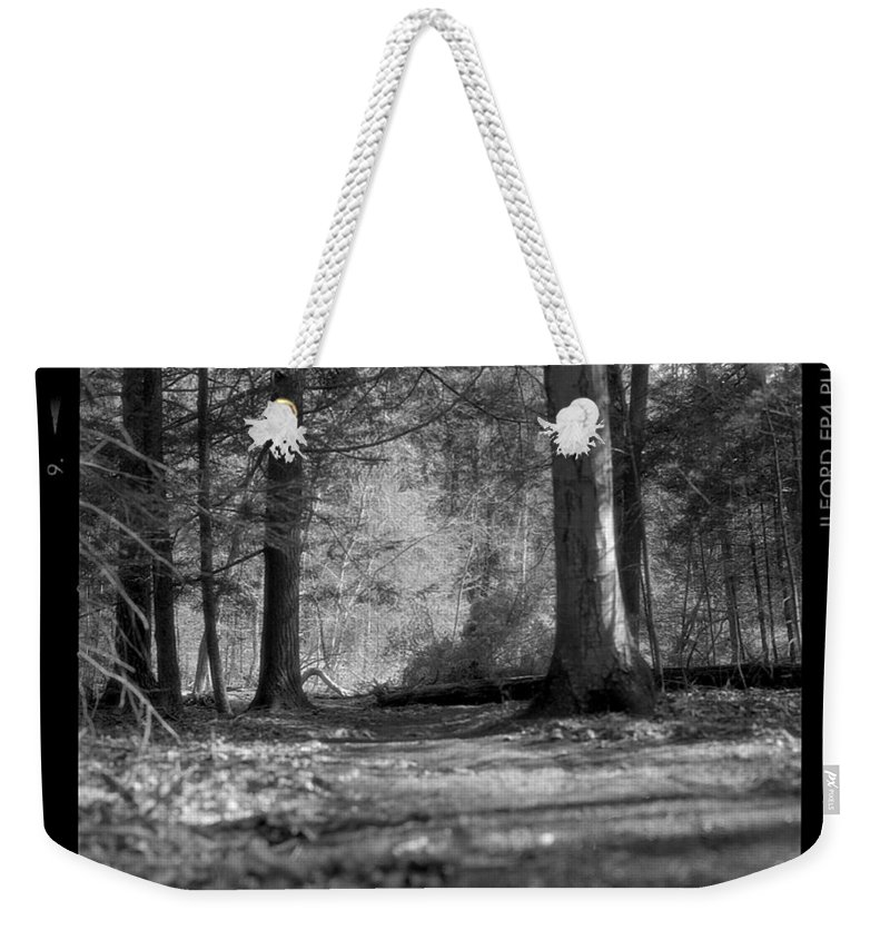 Trees Weekender Tote Bag featuring the photograph Ground Floor by Jean Macaluso