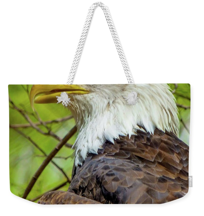 Orcinusfotograffy Weekender Tote Bag featuring the photograph Grounded by Kimo Fernandez