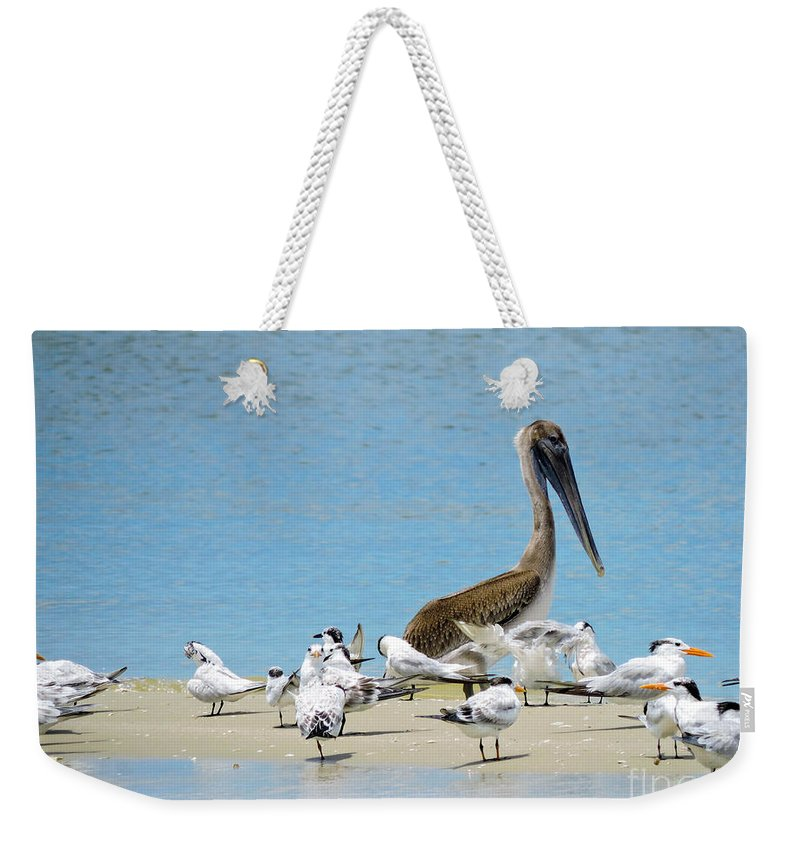 Shorebirds Weekender Tote Bag featuring the photograph Guarding The Bar by Marilee Noland