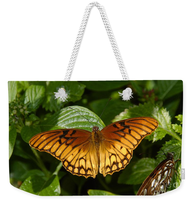 Gulf Fritillary Weekender Tote Bag featuring the photograph Gulf Fritillary by David Lee Thompson