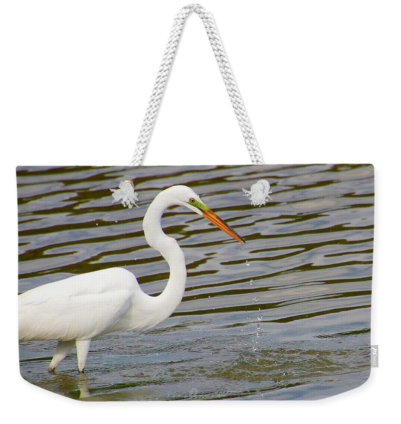 Weekender Tote Bag featuring the photograph Gulp by Tony Umana