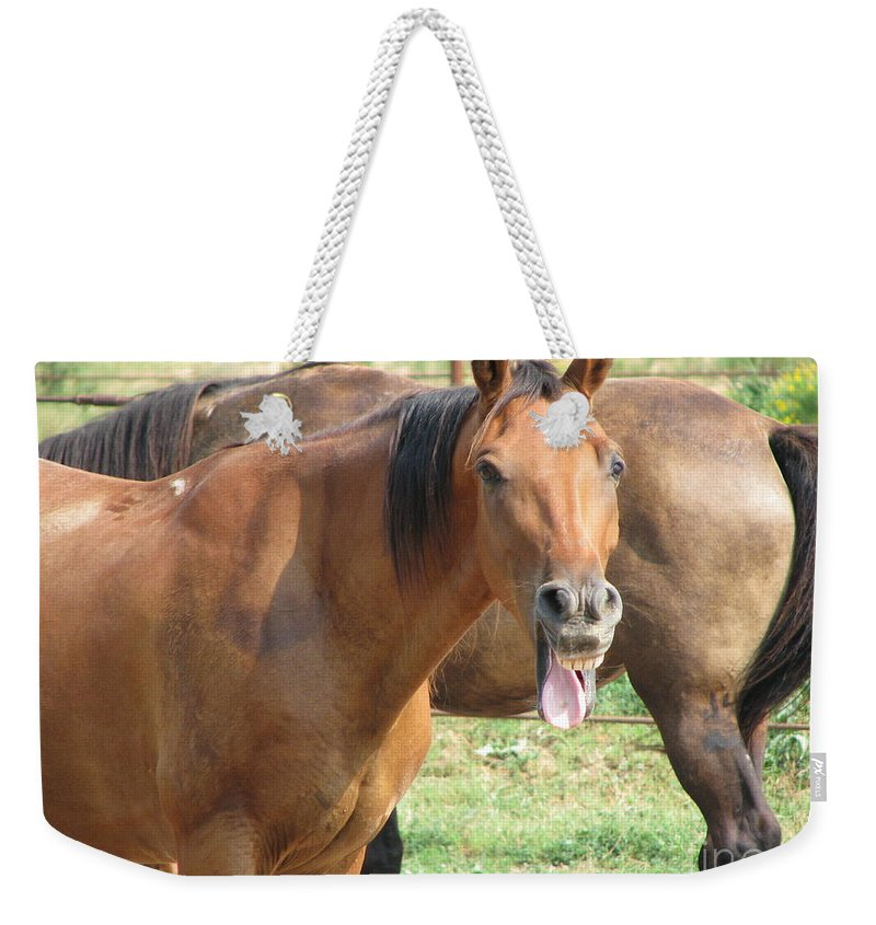 Horse Weekender Tote Bag featuring the photograph Haaaaa by Amanda Barcon