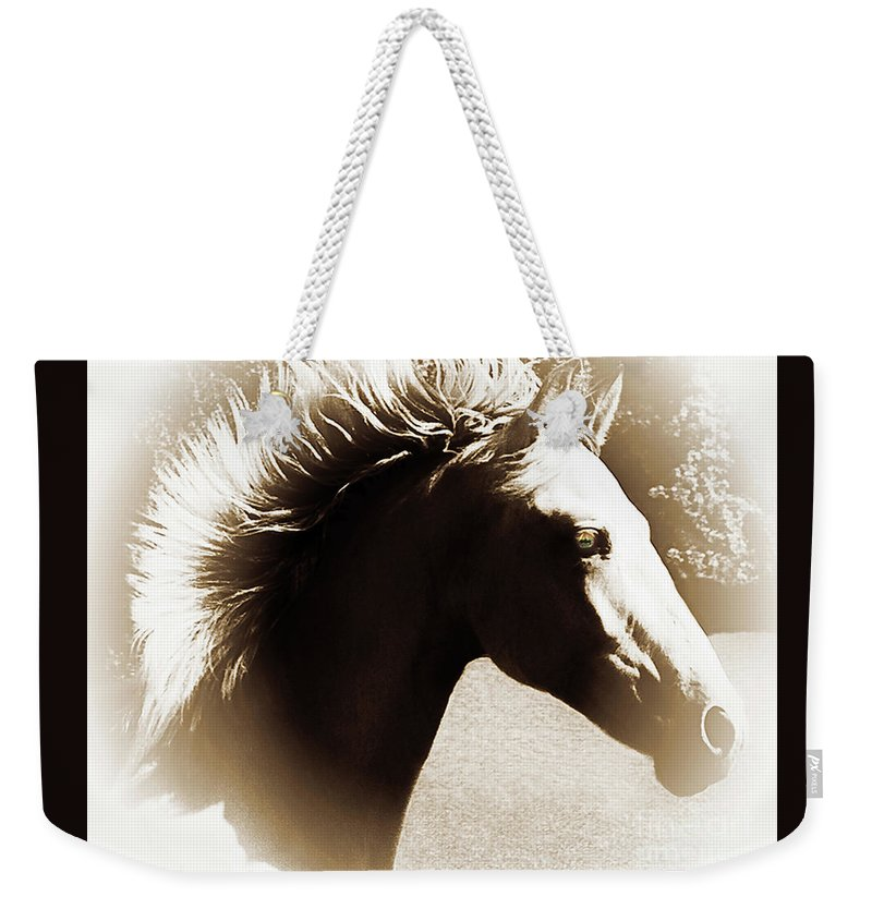 Halo Weekender Tote Bag featuring the photograph Hair Raising by Don Schimmel