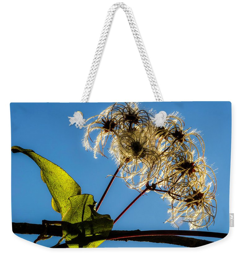 Flower Weekender Tote Bag featuring the photograph Hairy Beauty by Wolfgang Stocker