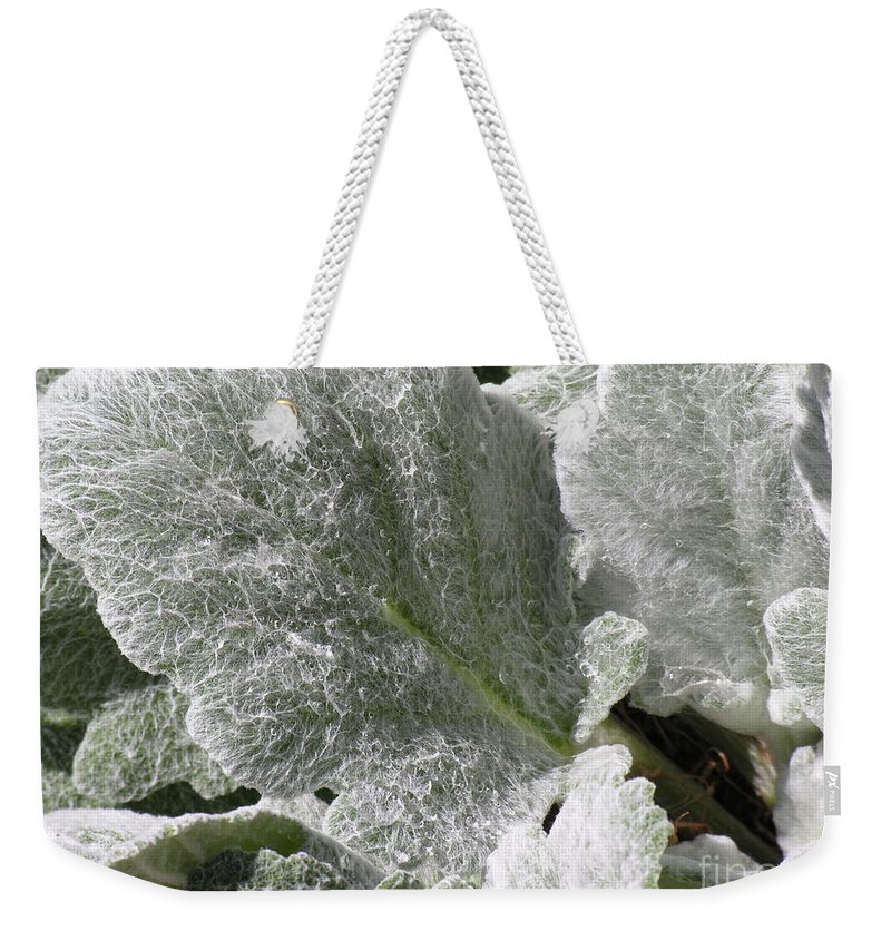 Hairy Weekender Tote Bag featuring the photograph Hairy Leaf by Diane Greco-Lesser