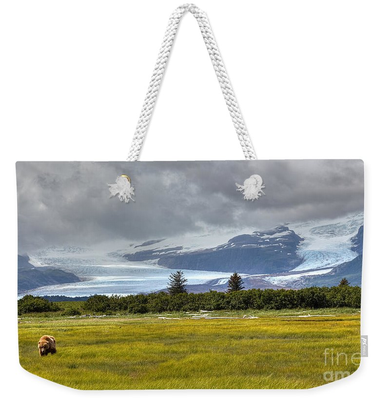 Hallo Glacier Weekender Tote Bag featuring the photograph Hallo Glacier And A Bear by James Anderson