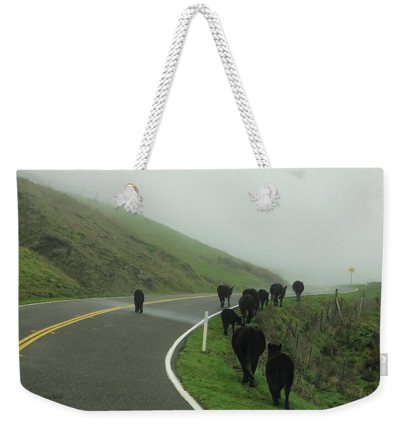 Cows Weekender Tote Bag featuring the photograph Hamburger Hill by Donna Blackhall