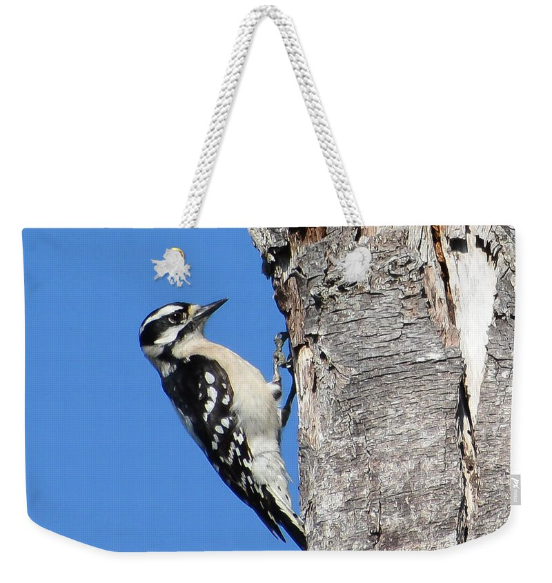 Lisa Kilby Weekender Tote Bag featuring the photograph Hammer Time by Lisa Kilby