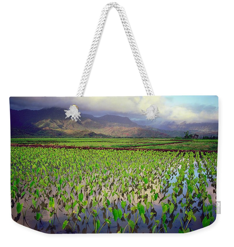 Kauai Weekender Tote Bag featuring the photograph Hanalei Valley Taro Ponds by Kevin Smith