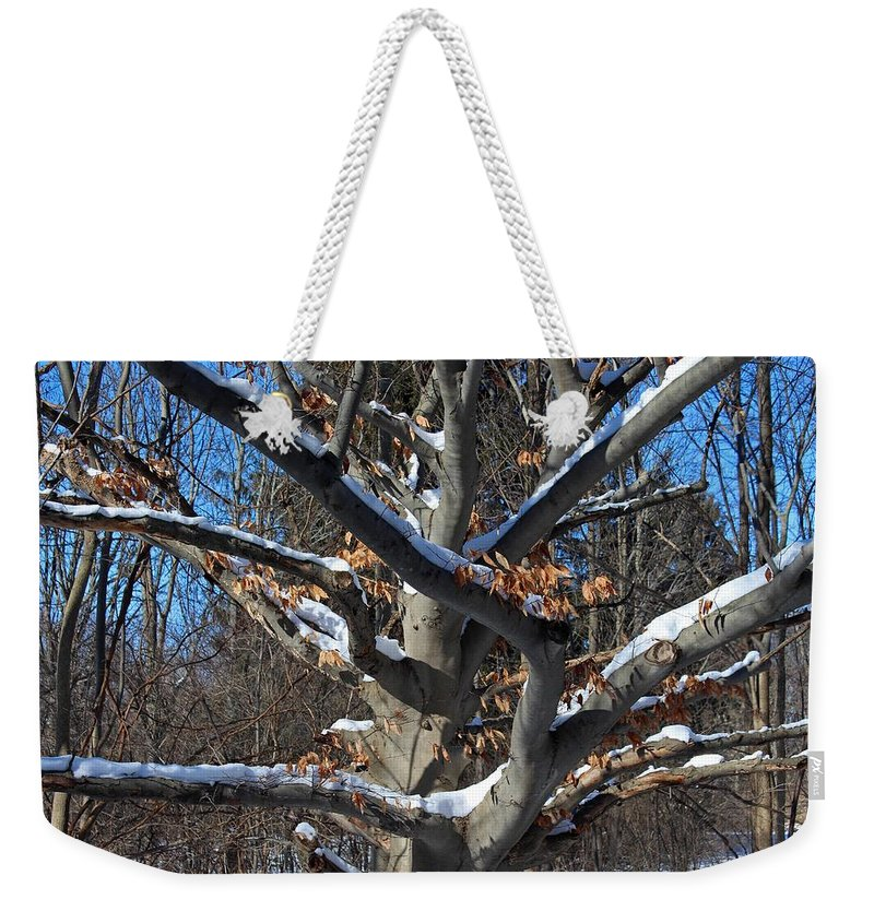 Nature Weekender Tote Bag featuring the photograph Handsome Romantic by Michiale Schneider