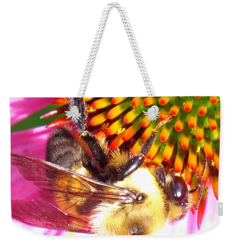 Bee Weekender Tote Bag featuring the photograph Hanging In There by Ian MacDonald
