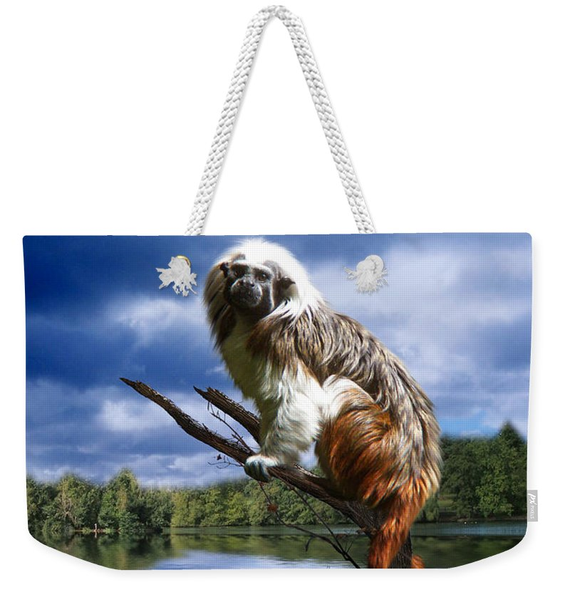 Monkey Weekender Tote Bag featuring the photograph Hanging On by Gravityx9  Designs