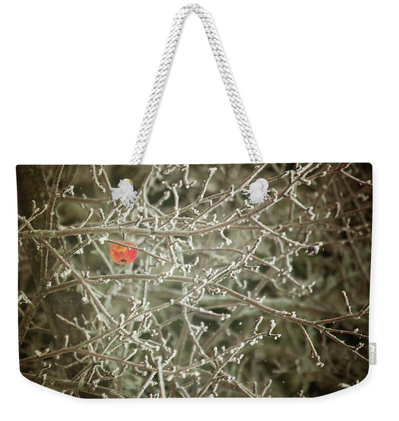 Fruit Weekender Tote Bag featuring the photograph Hanging On by Sue Collura
