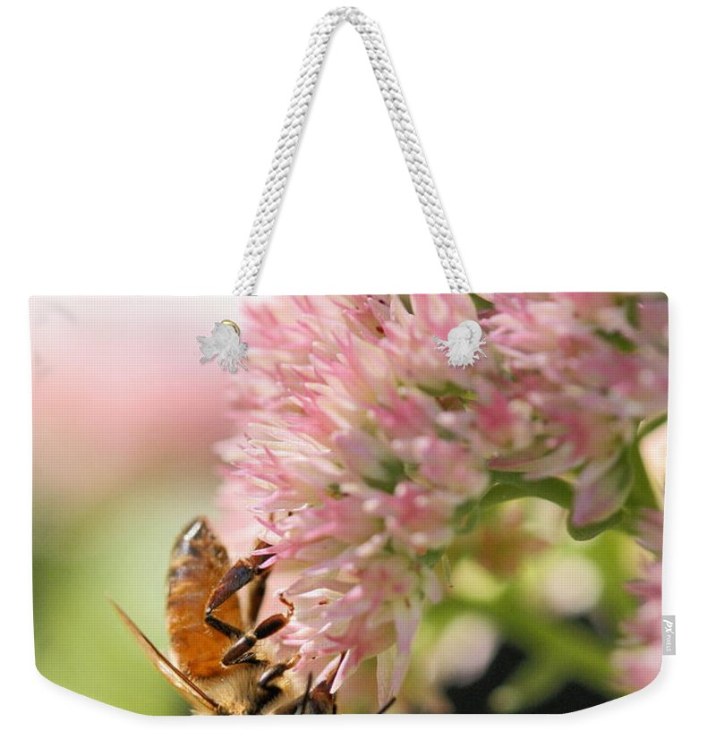 Bee Weekender Tote Bag featuring the photograph Hanging Out by Angela Rath