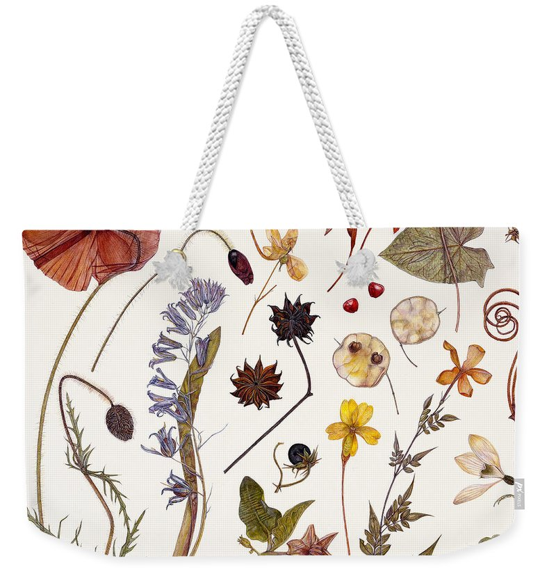 Poppy Weekender Tote Bag featuring the painting Hannah's Poppy by Rachel Pedder-Smith