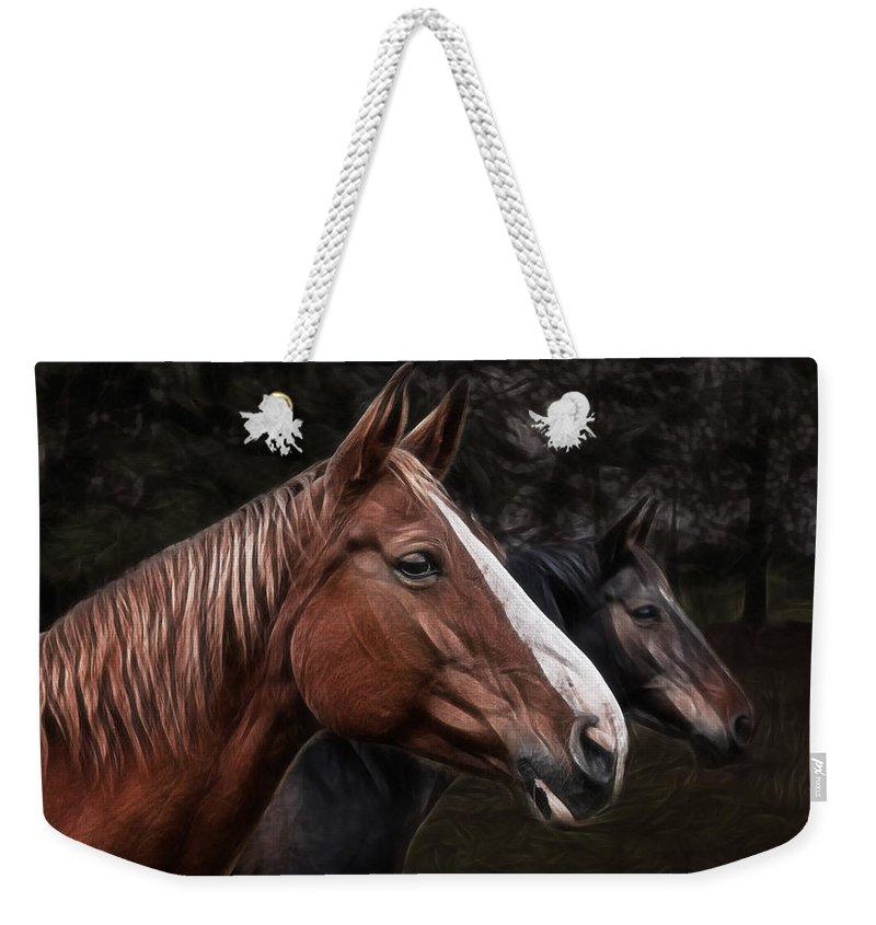 Horse Weekender Tote Bag featuring the photograph Hanoverians by Joachim G Pinkawa