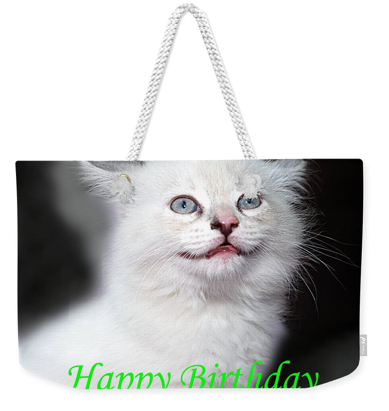 Greeting Card Weekender Tote Bag featuring the photograph Happy Birthday Kitty by Bob Johnson