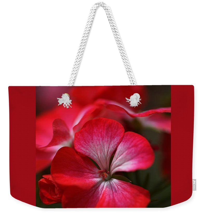 Geranium Weekender Tote Bag featuring the photograph Happy Bright Geranium And Design by Joy Watson