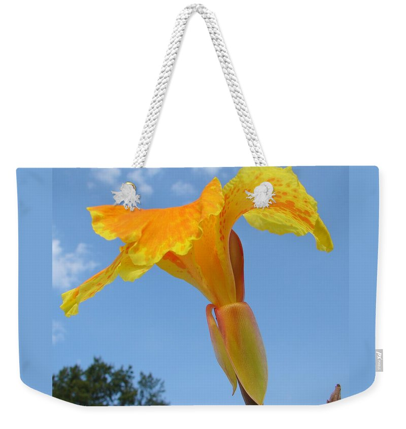 Weekender Tote Bag featuring the photograph Happy Canna by Luciana Seymour