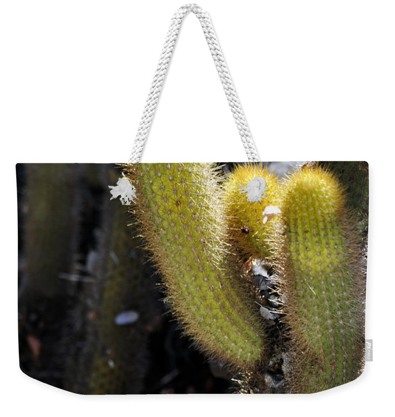 Clay Weekender Tote Bag featuring the photograph Happy by Clayton Bruster