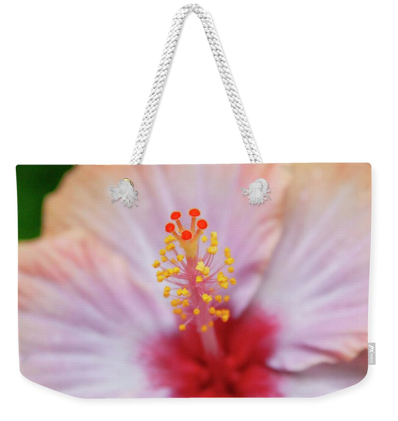 Floral Weekender Tote Bag featuring the photograph Happy Orange by Toni Hopper