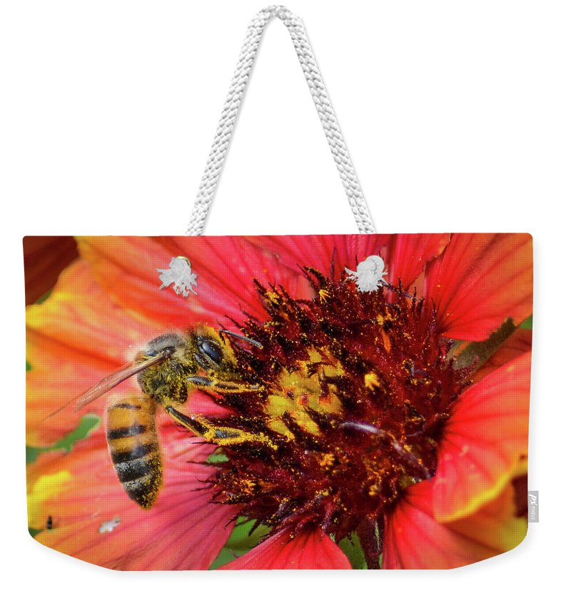 Spring Weekender Tote Bag featuring the photograph Hard Working Bee By Debra Martz by Debra Martz