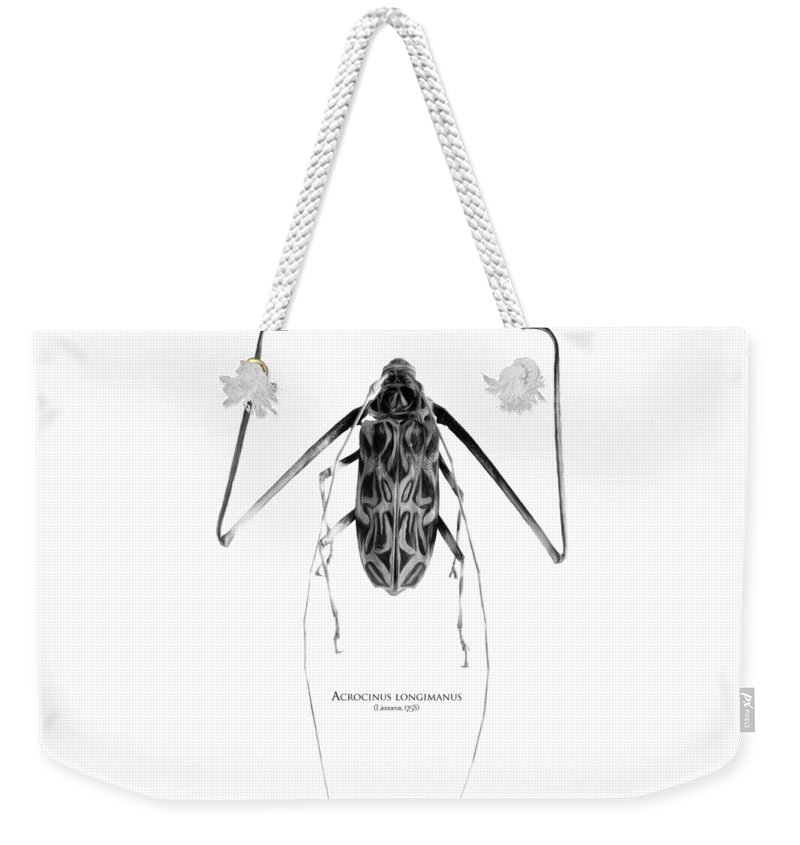 Black-and-white Weekender Tote Bag featuring the digital art Acrocinus I by Geronimo Martin Alonso