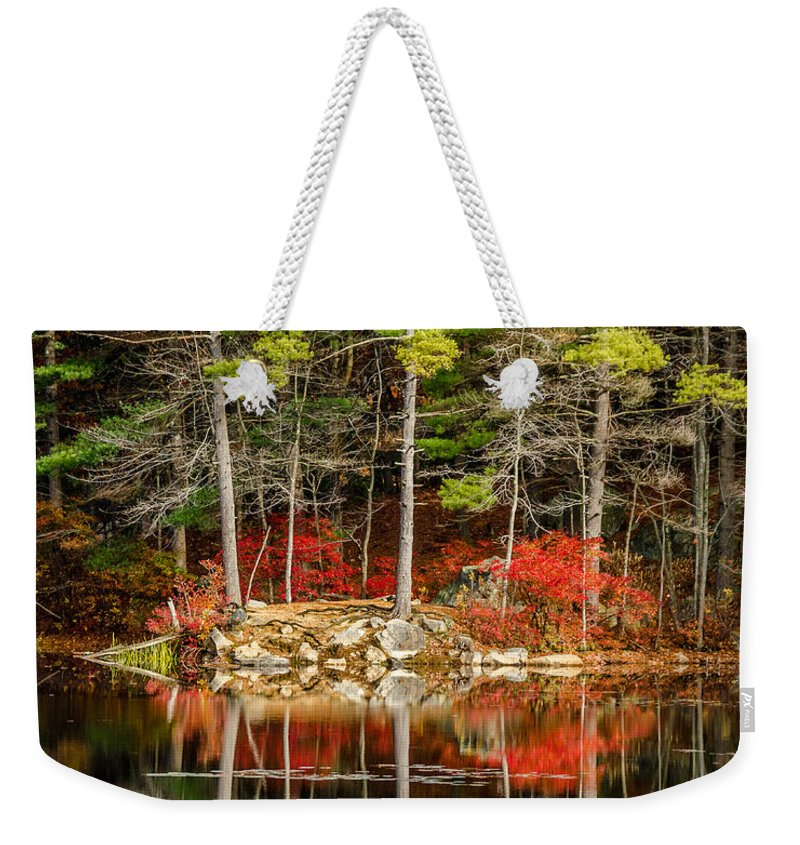 Harold Parker Weekender Tote Bag featuring the photograph Harold Parker State Park In The Fall by Pat Lucas