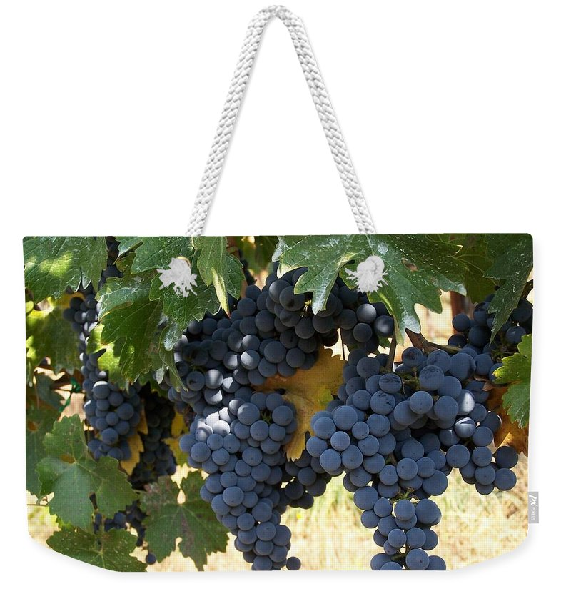 Grapes Weekender Tote Bag featuring the photograph Harvest Time by Gale Cochran-Smith