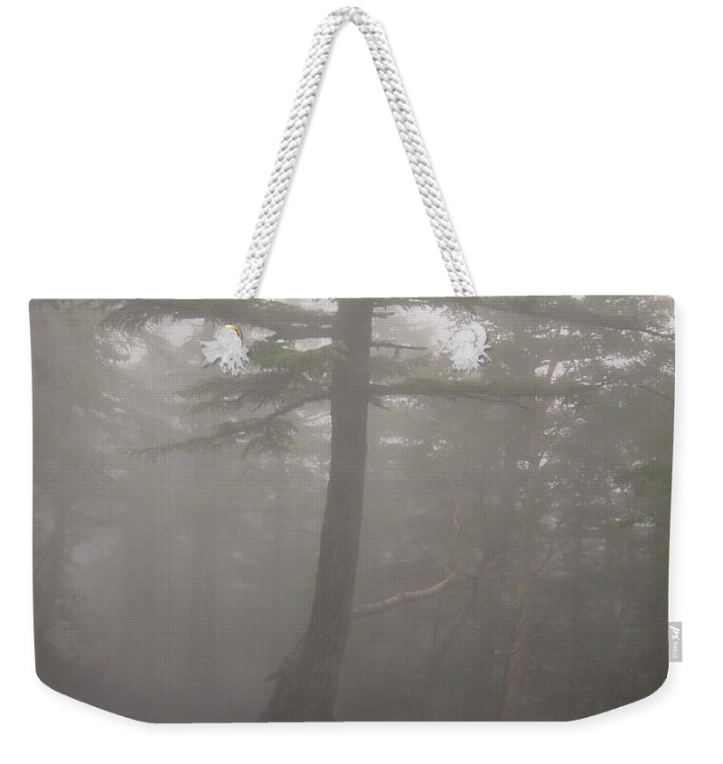 Forrest Weekender Tote Bag featuring the photograph Haunted Forest by D Turner