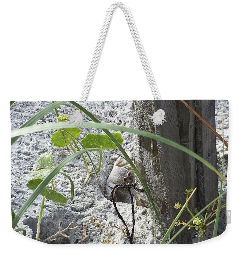Crab Weekender Tote Bag featuring the photograph Have A Crabby Day by Teresa Mucha