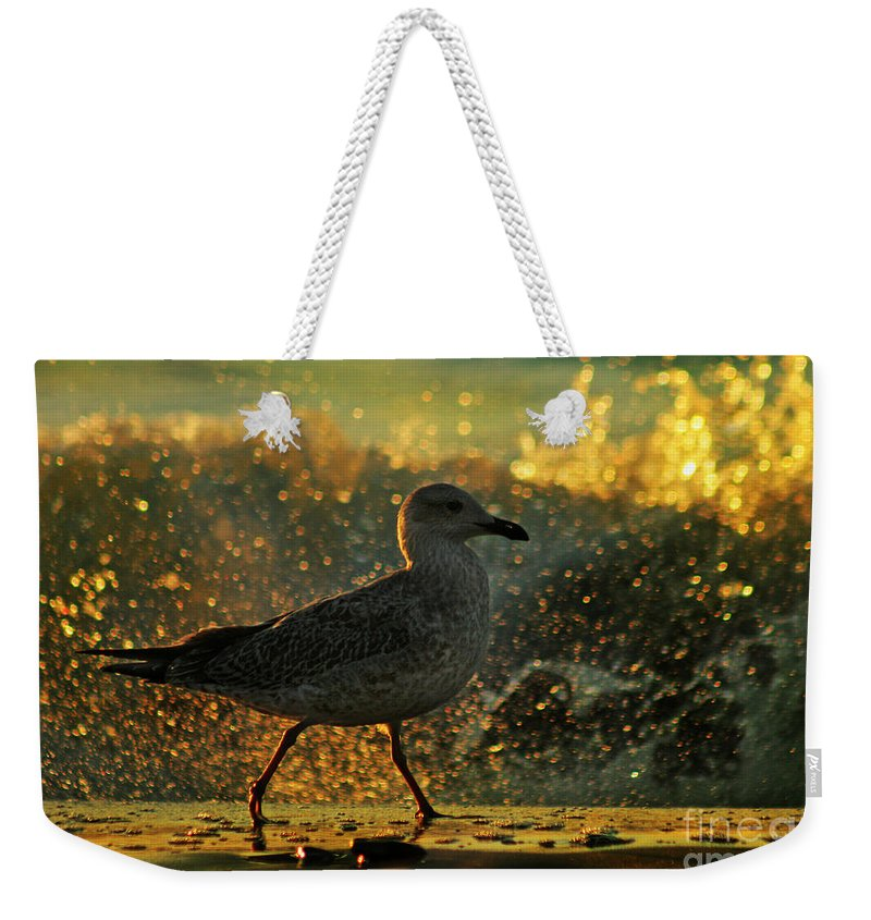 Seagull Weekender Tote Bag featuring the photograph Have A Walk By Th Sea by Angel Ciesniarska