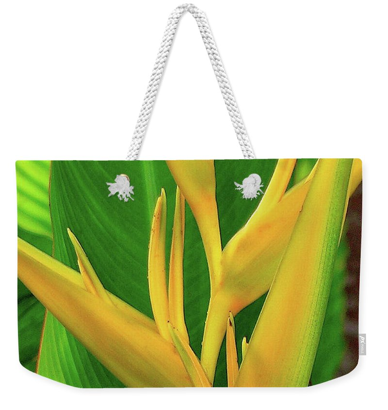 Hawaii Flowers Weekender Tote Bag featuring the photograph Hawaii Golden Torch by James Temple