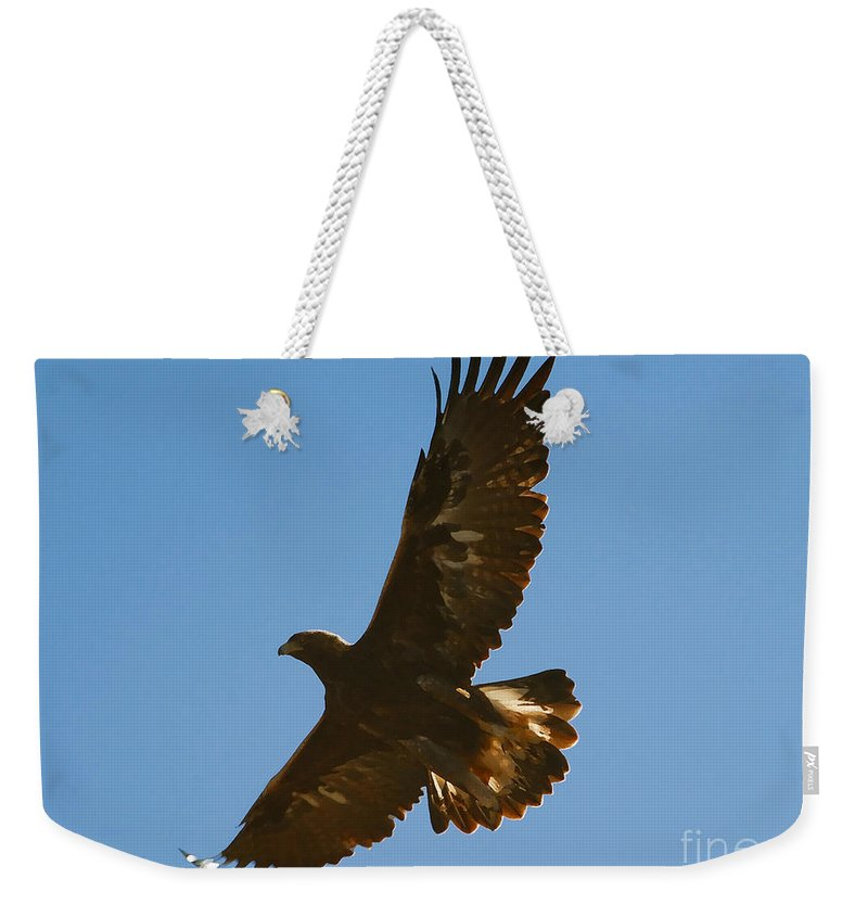 Hawk Weekender Tote Bag featuring the photograph Hawk In Flight by David Lee Thompson
