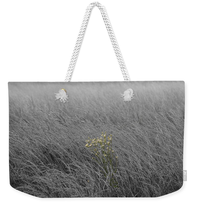 Fog Weekender Tote Bag featuring the photograph Hay Daisy In The Fog by Eric Liller