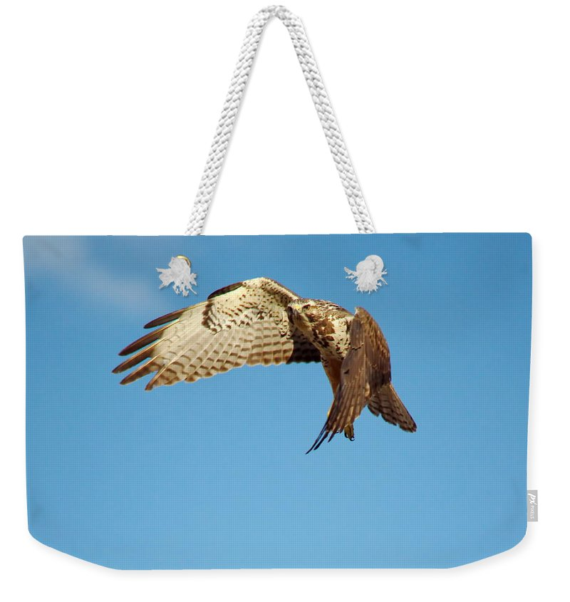 Nature Weekender Tote Bag featuring the photograph He Went That Way by Crystal Massop