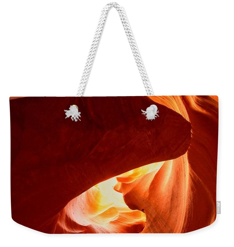 Head Of The Dog Weekender Tote Bag featuring the photograph Head Of The Dog Portrait by Adam Jewell
