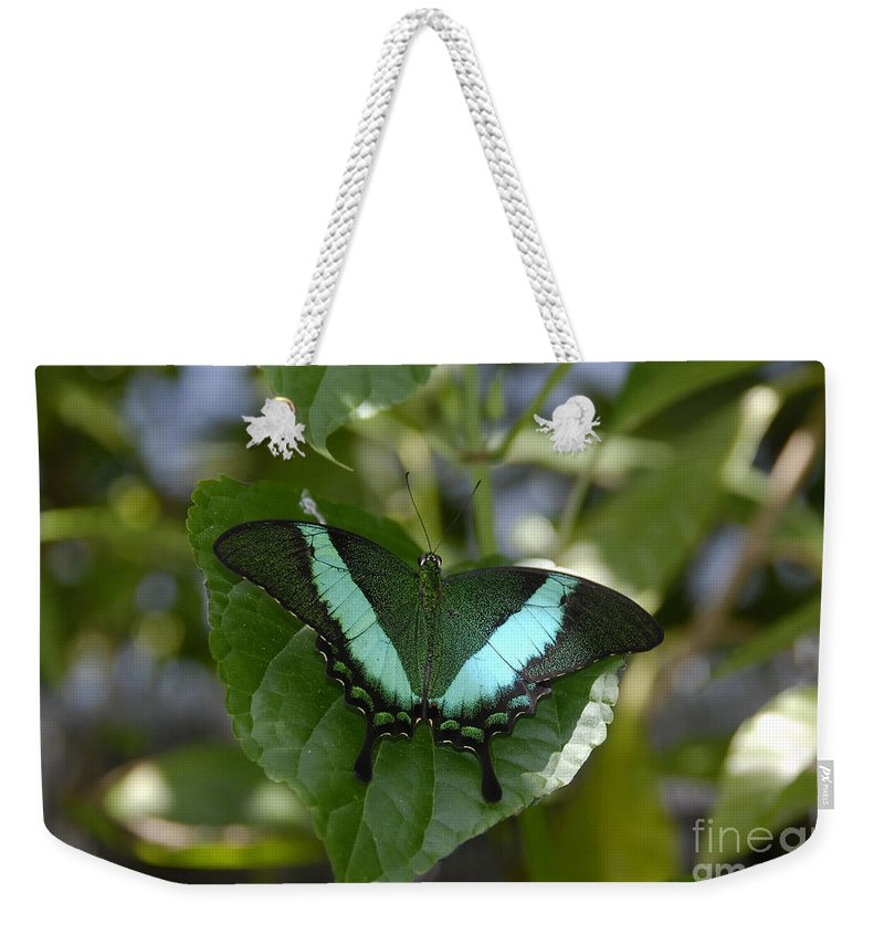 Butterfly Weekender Tote Bag featuring the photograph Heart Leaf Butterfly by David Lee Thompson