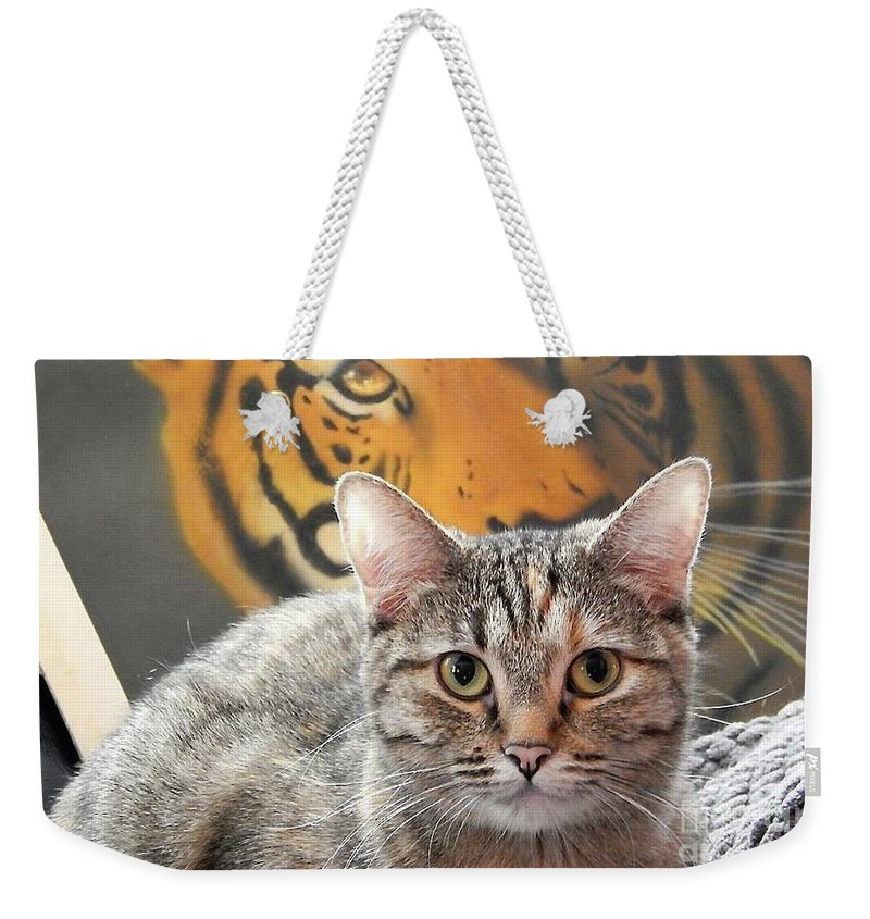 Animals Weekender Tote Bag featuring the photograph Heart Of A Tiger by Viki Velazquez
