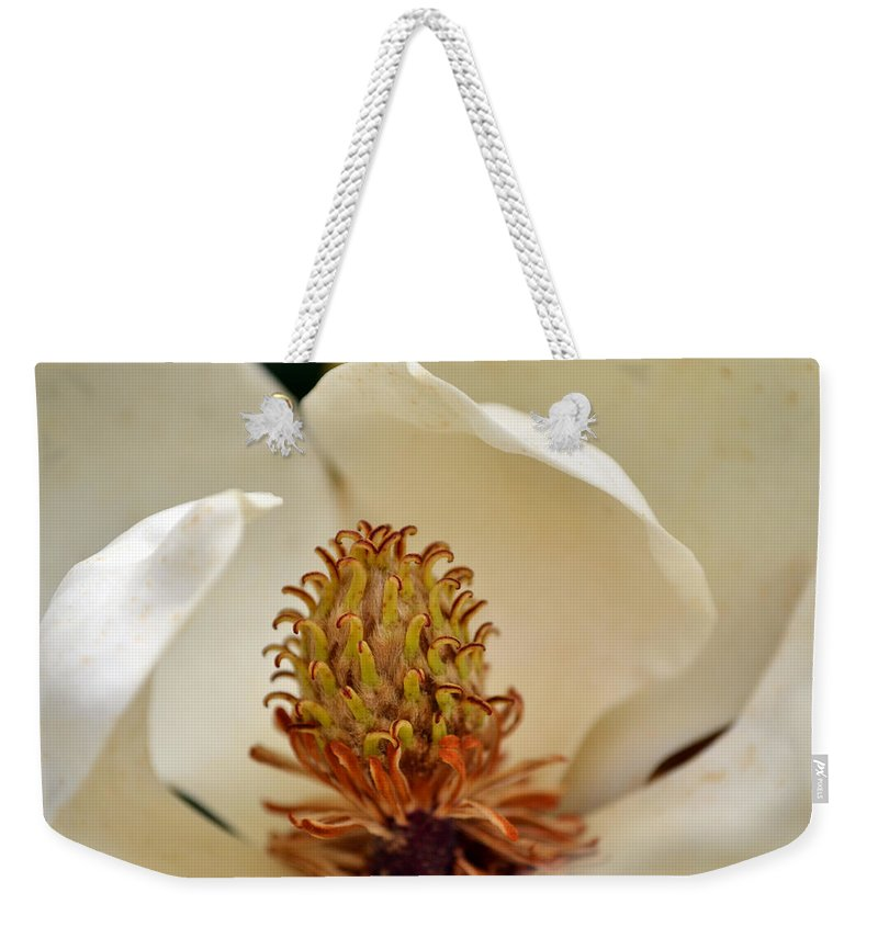 Magnolia Weekender Tote Bag featuring the photograph Heart Of Magnolia by Larry Bishop