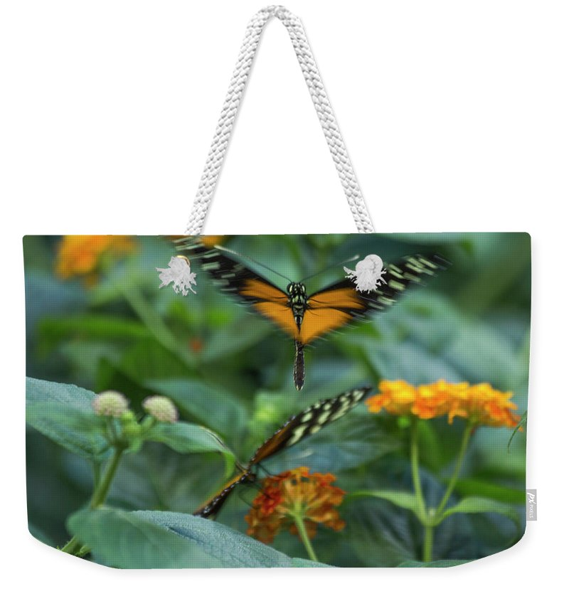 Butterfly Weekender Tote Bag featuring the photograph Heart Of The Matter by Betsy Knapp