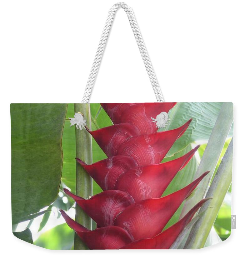 Heliconia Weekender Tote Bag featuring the photograph Heliconia Hot Flash by Mary Deal