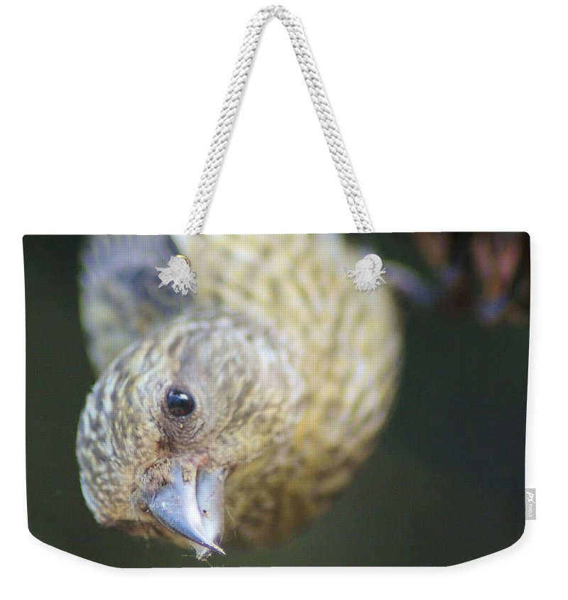 Fowl Weekender Tote Bag featuring the photograph Hello by Jeff Swan