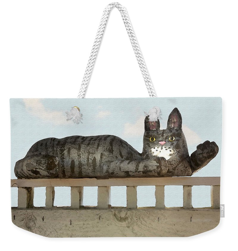 Cat Weekender Tote Bag featuring the photograph Hello Kitty by Sharon Foster