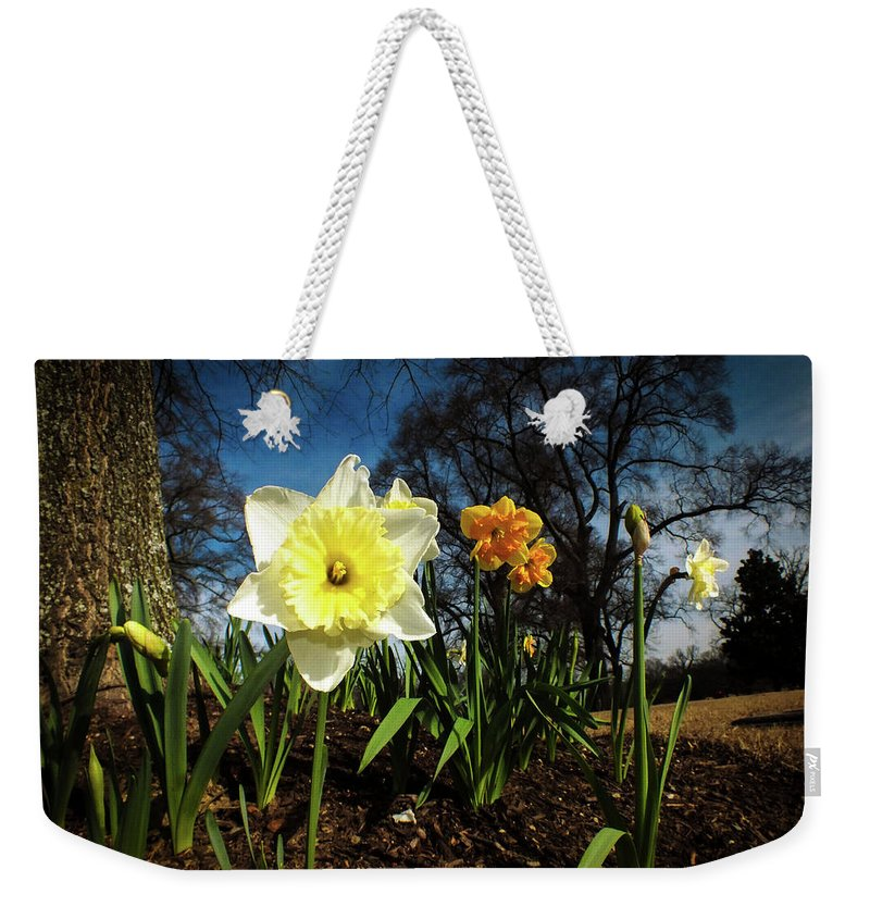 Flowers Weekender Tote Bag featuring the photograph Hello Spring by Hannah Underhill