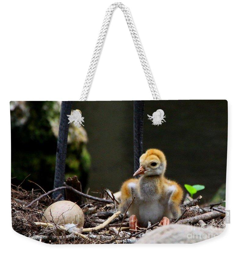 Sandhill Crane Weekender Tote Bag featuring the digital art Hello World by Barbara Bowen