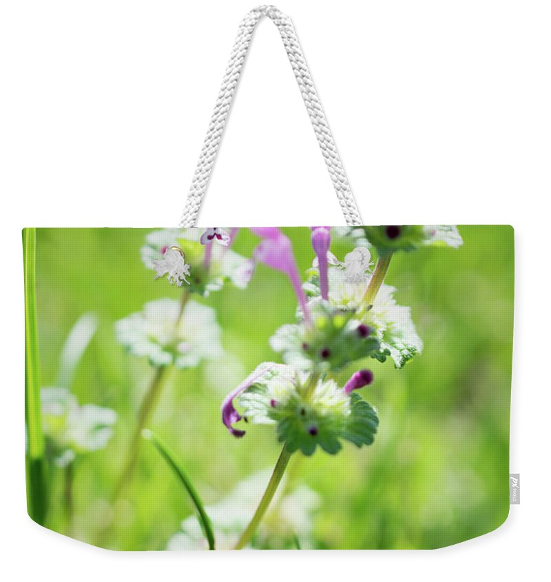 Henbit Weekender Tote Bag featuring the photograph Henbit by Margaret Koc