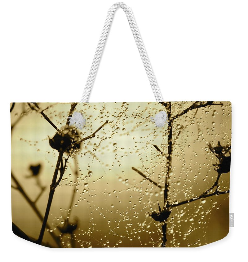 Sunrise Weekender Tote Bag featuring the photograph Here Comes The Sun by Carol Groenen