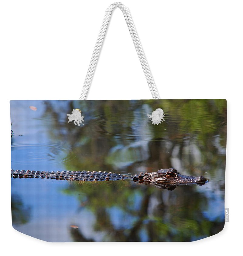 Alligator Weekender Tote Bag featuring the photograph Here He Comes by Susanne Van Hulst