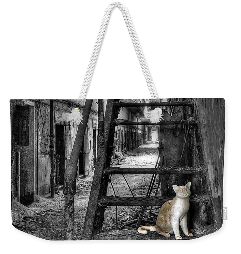 Abandoned Weekender Tote Bag featuring the photograph Here Kitty Kitty Kitty... by Evelina Kremsdorf